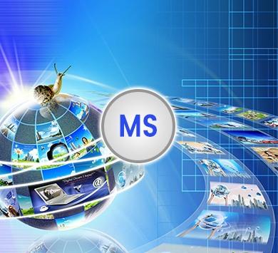 Multimedia Standard Course